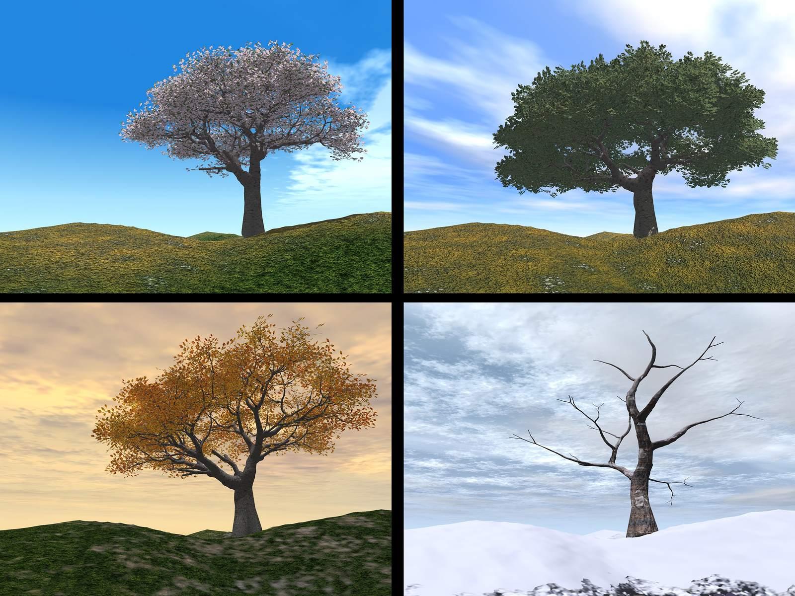 seasons explained seasons for ks1 children spring summer