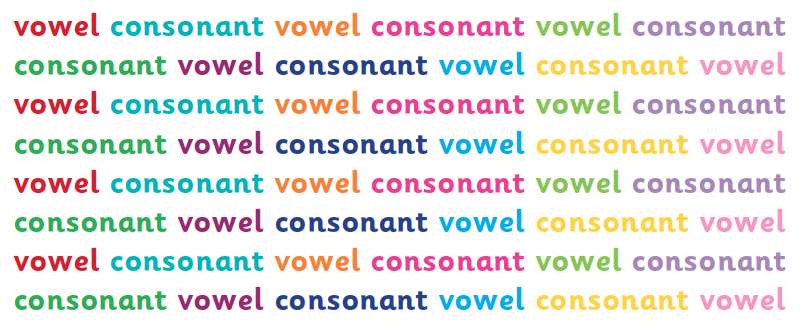 Vowels and consonants explained for primary-school parents