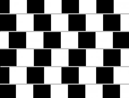What Are Optical Illusions Fun Experiments For Kids To Try Theschoolrun