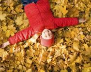 Autumn learning activities