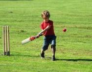 Boy playing cricket