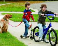 Brothers riding their bikes