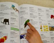 Child using a dictionary