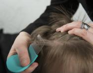 Headlice detection combing