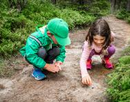 DIY Forest School activities