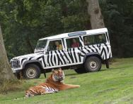 Longleat reviewed for parents and families