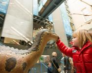 World Museum Liverpool girl and dinosaur © Mark McNulty