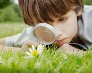 Little boy studying flower