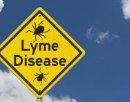 Lyme disease explained for parents