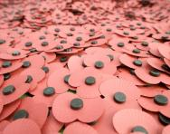10 ways to remember the First World War with your child