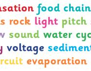 Primary-school science glossary