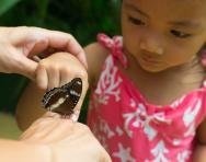 How to raise an environmentally conscious child