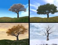 The four seasons: spring, summer, autumn, winter