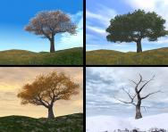 The four seasons: spring, summer, autumn, winter