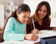 What is a tutor-proof test?