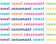 What are vowels and consonants?