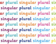 What are singular and plural?