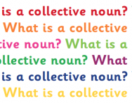 What is a collective noun?