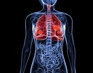 Human respiratory system for ks1 and ks2 children lungs and human respiratory system ccuart Choice Image