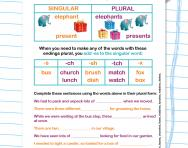 Adding -s and -es to form the plural worksheet