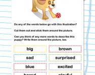 Adjectives: describing words worksheet