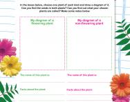 Classifying plants worksheet