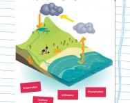 Complete the water cycle worksheet