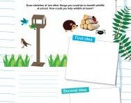 Create habitats for wildlife worksheet