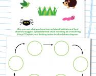 Draw a food chain diagram worksheet