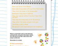 Explanation texts writing frame worksheet