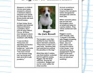 Fact and opinion in a newspaper article worksheet