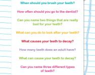 Find facts about teeth worksheet
