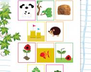 Grouping objects from nature worksheet