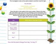 Habitat adaptation worksheet