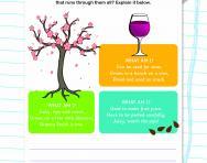 Haiku themes worksheet