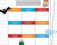 Identifying animal features worksheet