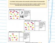 Identifying denominators and numerators worksheet