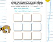 Investigating animal homes worksheet