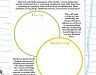 Living or non-living worksheet