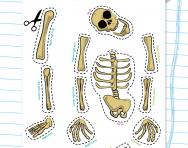 Make your own skeleton puppet activity