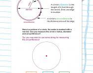 Parts of a circle worksheet