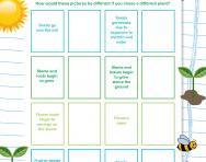 Plant life cycles worksheet