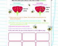 Pollination and fertilisation worksheet