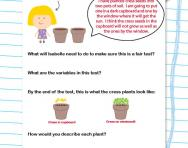 Predictions and conclusions: lifecycles worksheet