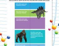 Prehistory timeline worksheet
