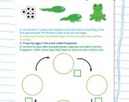 Understanding a frog's life cycle