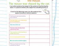 Understanding active and passive worksheet