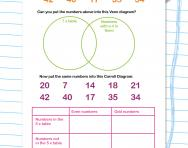 Venn and Carroll diagrams worksheet