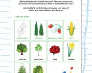What do we use plants for?