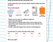 Which is the best insulator? activity